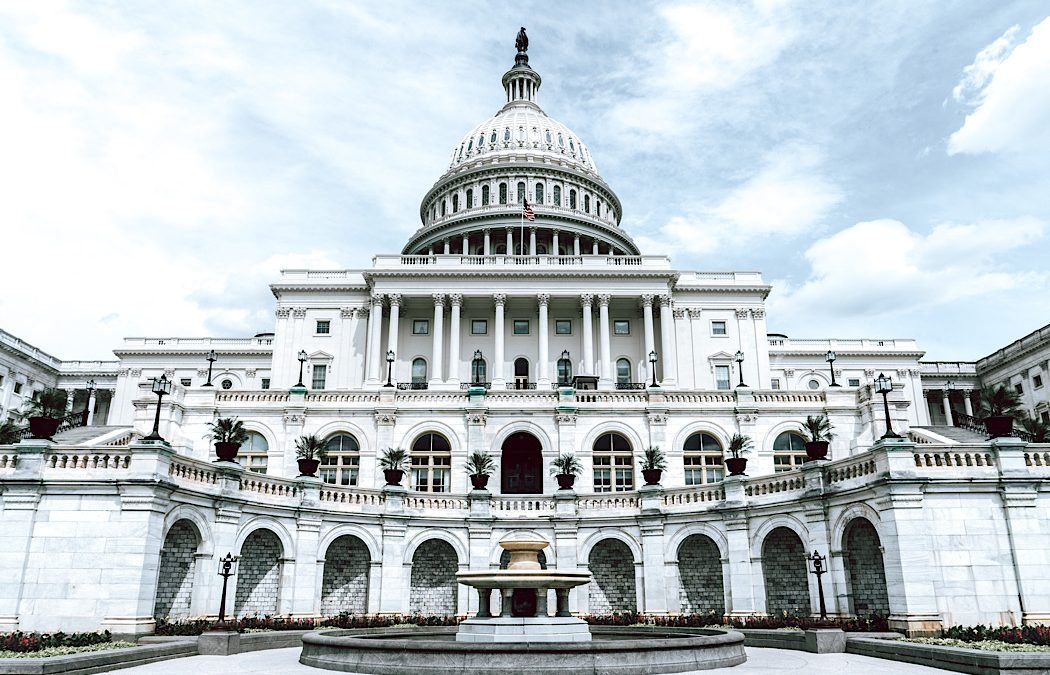 Capitol Punishment: My Story